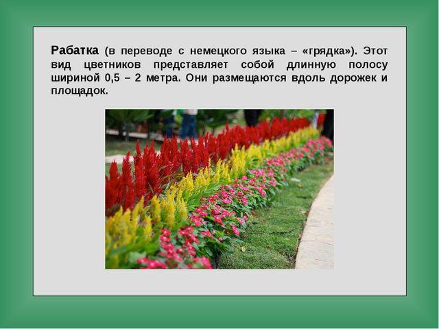 Рабатка (в переводе с немецкого языка – «грядка»). Этот вид цветников предста...