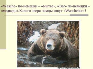«Wasche» по-немецки – «мытье», «Bar» по-немецки – «медведь».Какого зверя немц