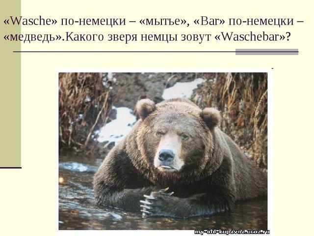 «Wasche» по-немецки – «мытье», «Bar» по-немецки – «медведь».Какого зверя немц...