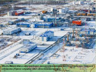 Мыльджинское — крупнейшее газоконденсатное месторождение Томской области (Пр