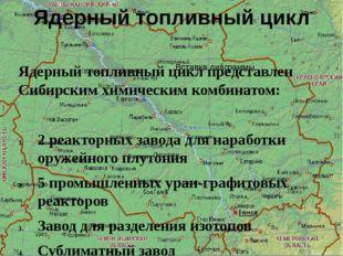Ядерный топливный цикл Ядерный топливный цикл представлен Сибирским химически