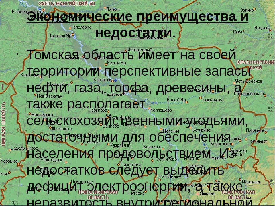 Экономические преимущества и недостатки. Томская область имеет на своей терри...