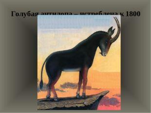 Голубая антилопа – истреблена к 1800 году