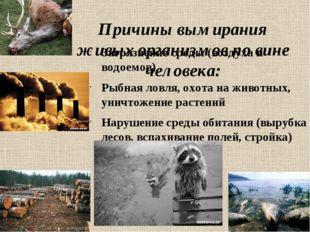 Причины вымирания живых организмов по вине человека: Загрязнение среды (возду