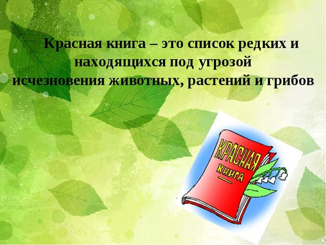 Красная книга – это список редких и находящихся под угрозой исчезновенияжив...