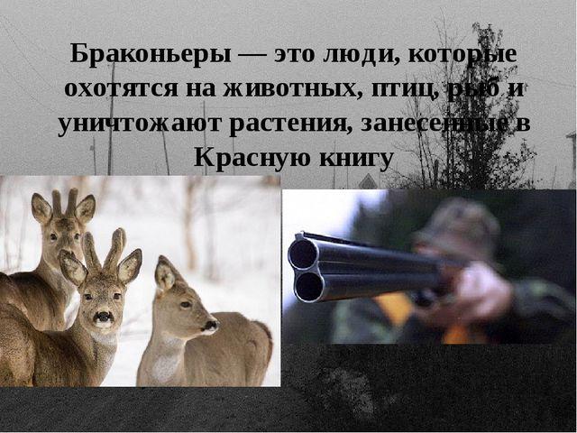 Браконьеры — это люди, которые охотятся на животных, птиц, рыб и уничтожают р...