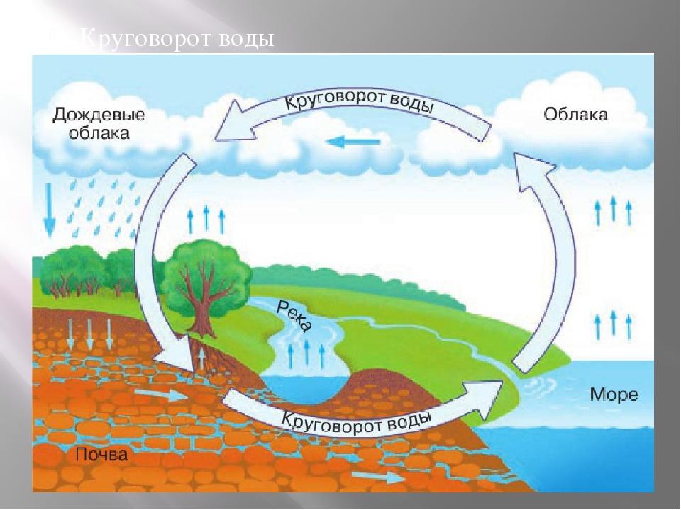 Круговорот воды в природе схема и описание