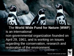 The World Wide Fund for Nature (WWF) is an international non-governmental org