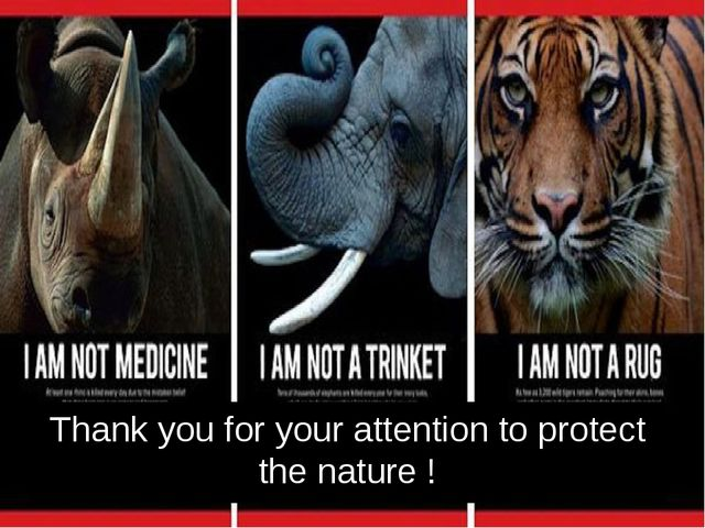 Thank you for your attention to protect the nature !