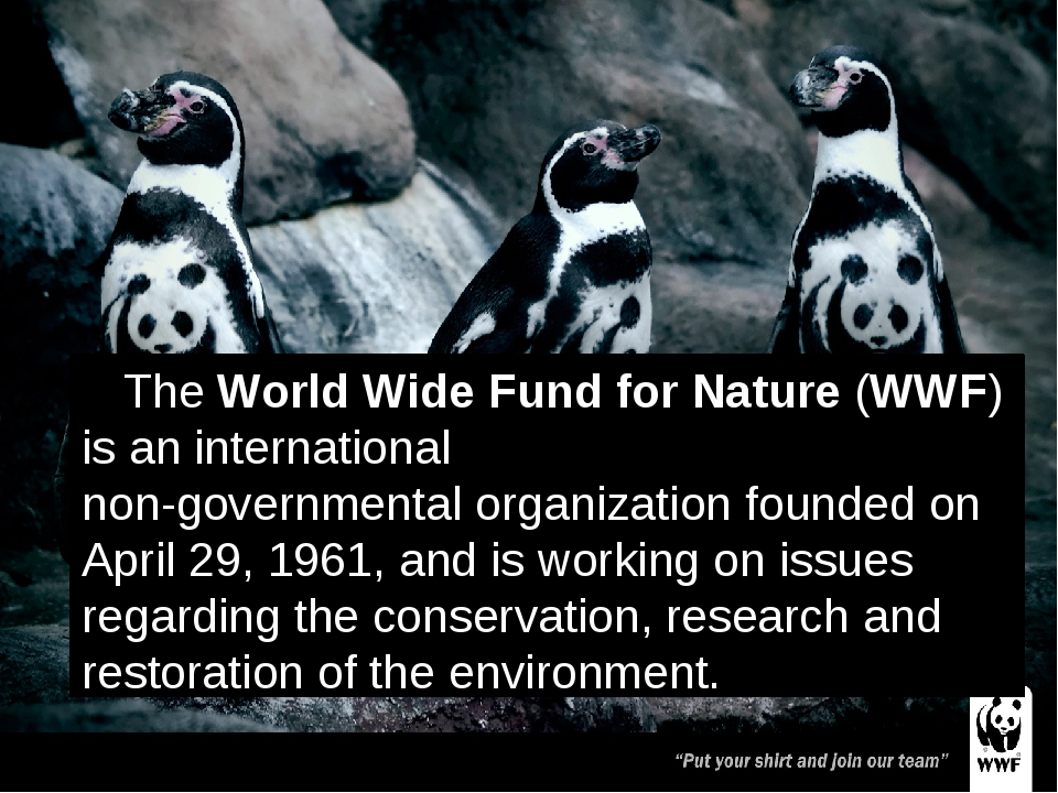 The World Wide Fund for Nature (WWF) is an international non-governmental org...