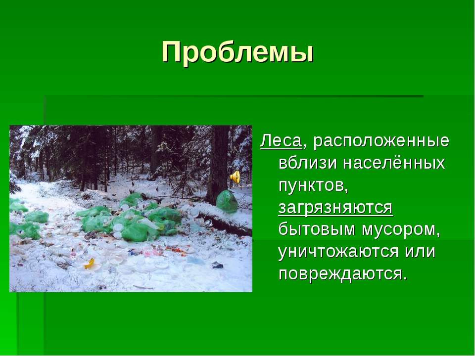 Проблемы Леса, расположенные вблизи населённых пунктов, загрязняются бытовым...