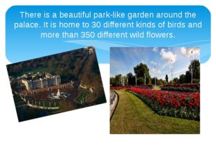 There is a beautiful park-like garden around the palace. It is home to 30 dif
