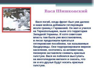 Вася погиб, когда фронт был уже далеко инаши войска добивали гитлеровцев во