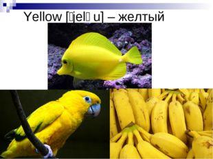 Yellow [ˈjeləu] – желтый