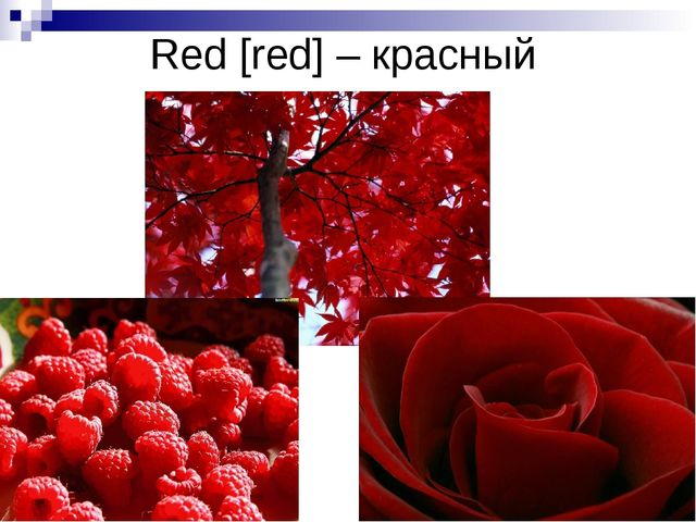 Red [red] – красный