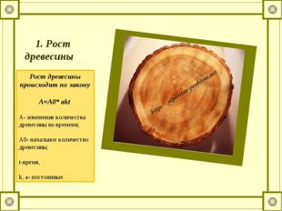 1. Рост древесины  Рост древесины происходит по закону  A=A0* akt A-изме