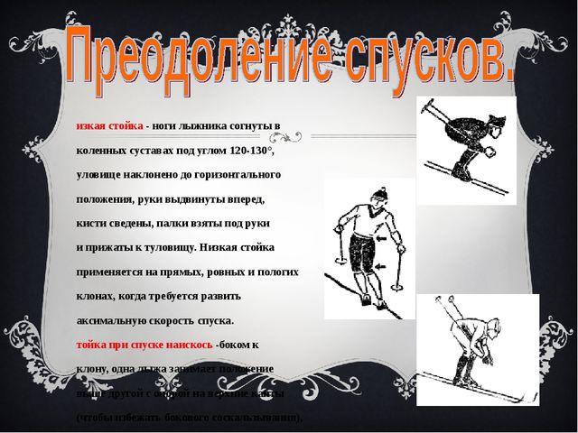 Низкая стойка - ноги лыжника согнуты в коленных суставах под углом 120-130°,...