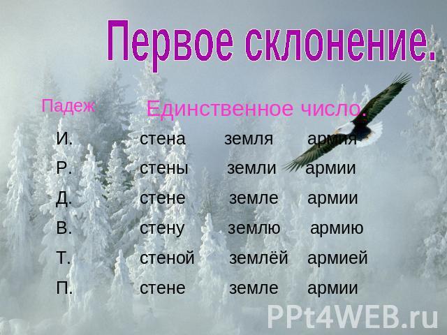 hello_html_mfe2d5f9.jpg