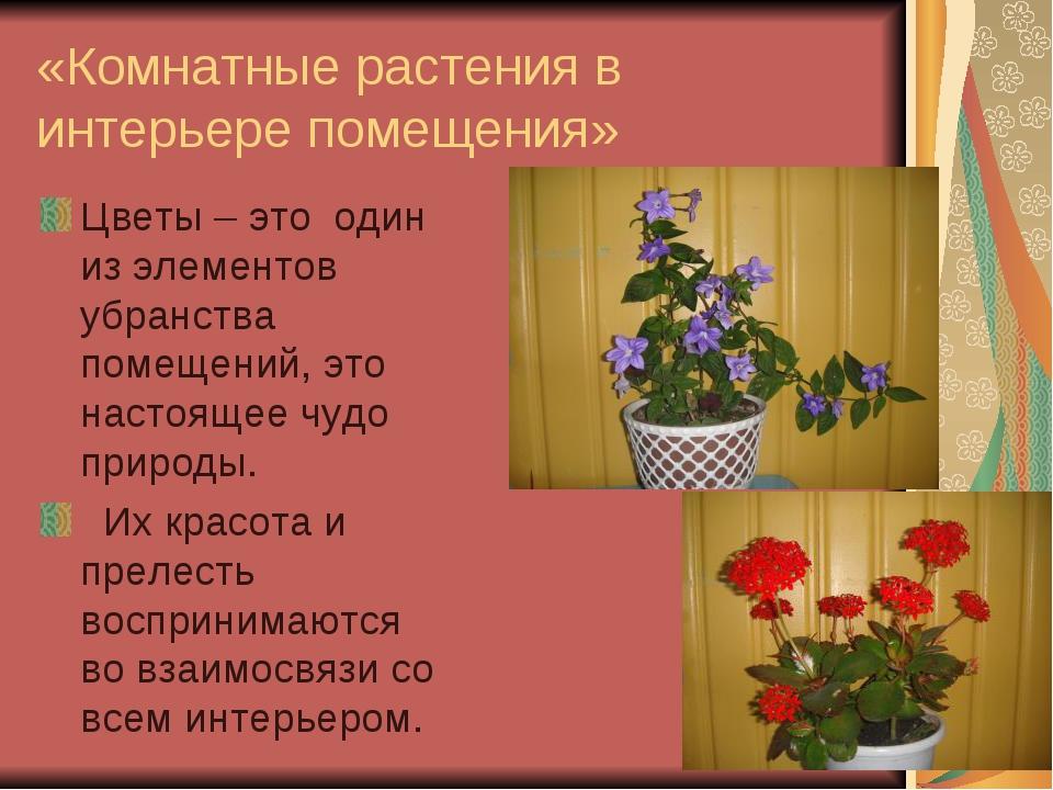 «Комнатные растения в интерьере помещения» Цветы – это один из элементов убра...
