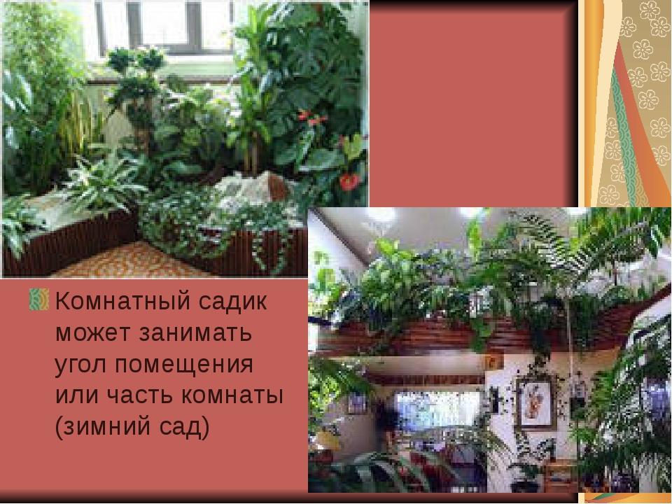 Комнатный садик может занимать угол помещения или часть комнаты (зимний сад)
