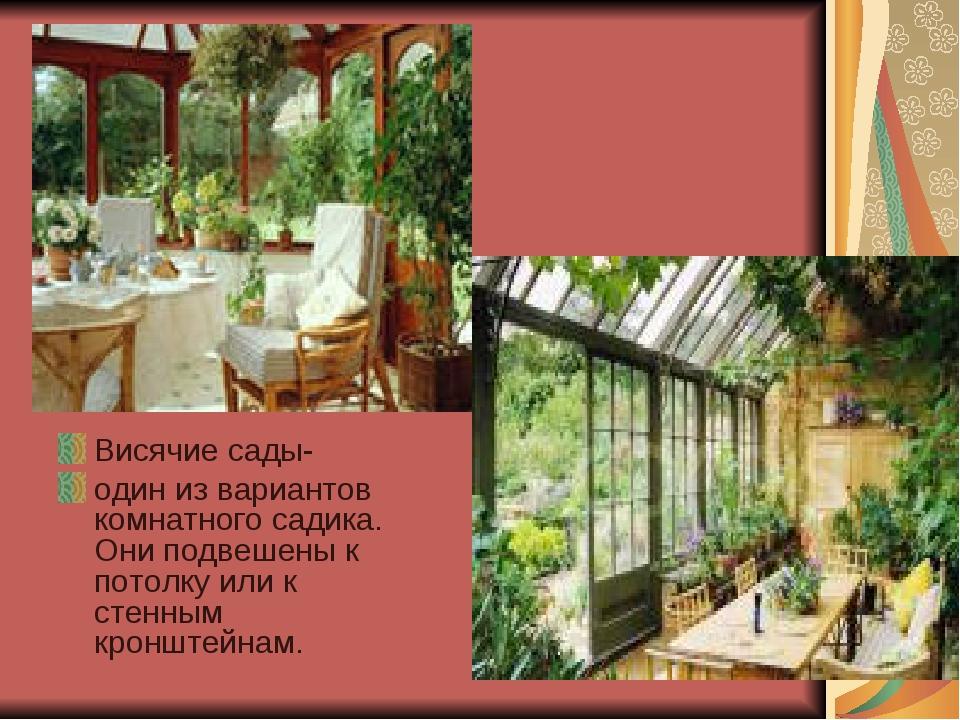Висячие сады- один из вариантов комнатного садика. Они подвешены к потолку ил...