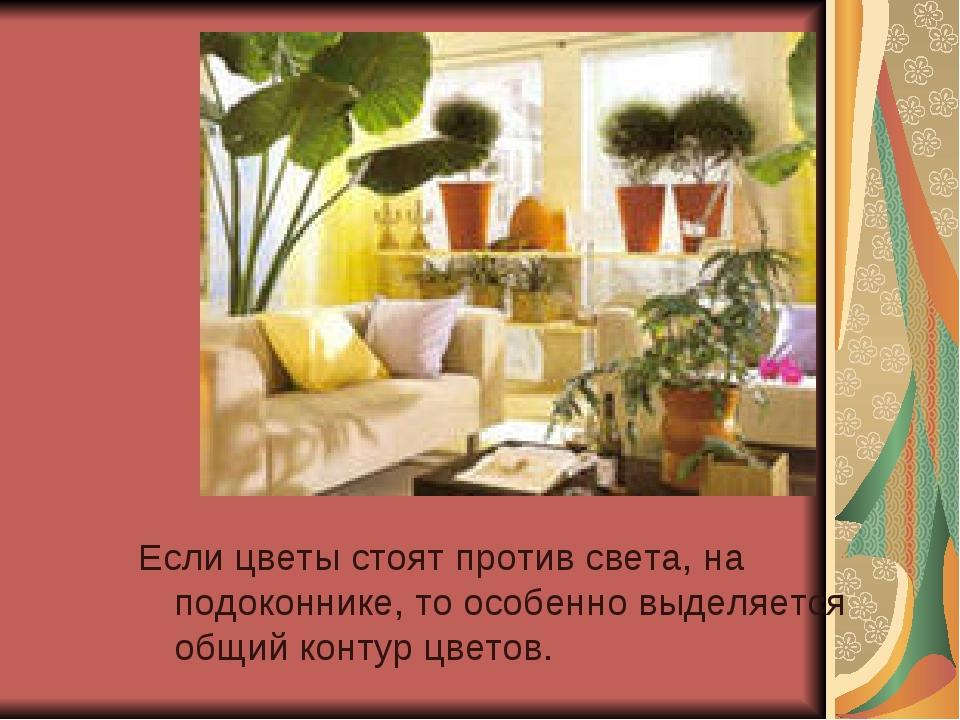 Если цветы стоят против света, на подоконнике, то особенно выделяется общий к...