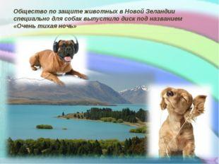 Общество по защите животных в Новой Зеландии специально для собак выпустило д