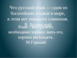 Что русский язык — один из богатейших языков в мире, в этом нет никакого сом