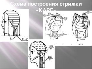 Схема построения стрижки «КАРЕ»