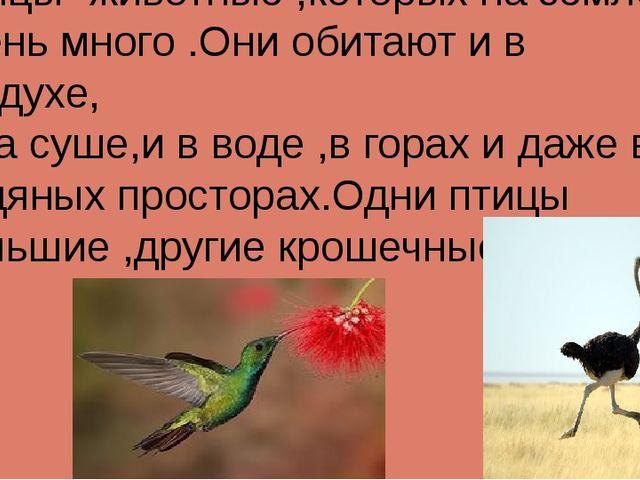 Птицы -животные ,которых на земле очень много .Они обитают и в воздухе, и на...