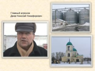 Главный агроном Деев Николай Никифорович