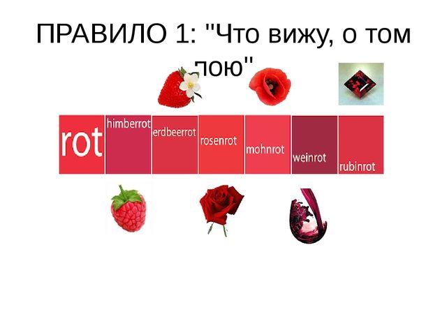"""ПРАВИЛО 1: """"Что вижу, о том пою"""""""