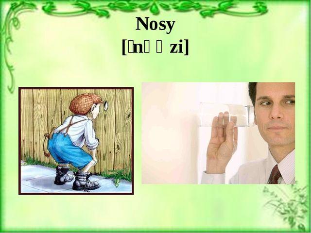 Nosy [ˈnəʊzi]