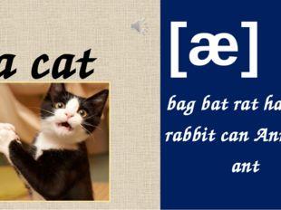 a cat [æ] bagbatrat hat cap rabbit canAnn panant