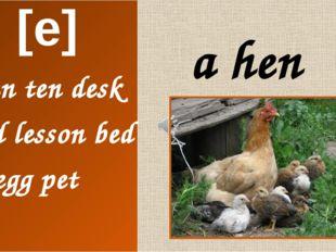 a hen [e] pentendesk Ted lesson bedegg pet