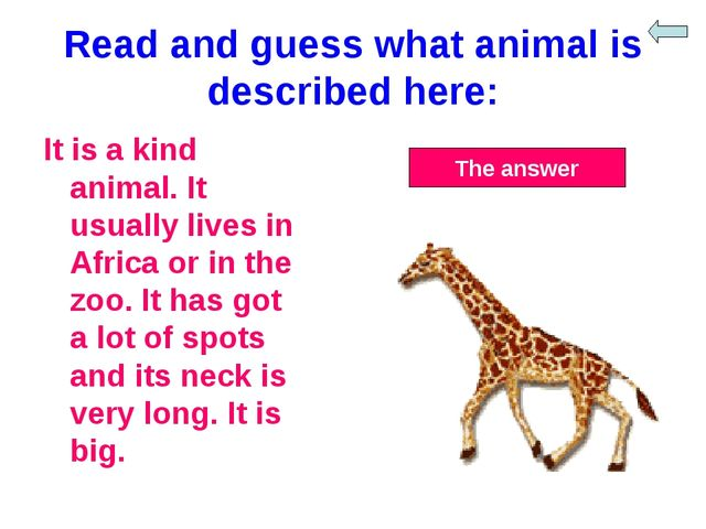 Read and guess what animal is described here: It is a kind animal. It usually...