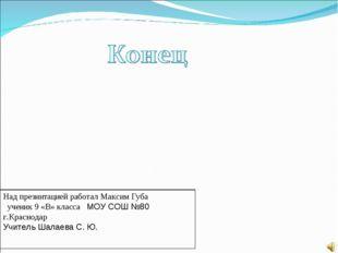 Над презинтацией работал Максим Губа ученик 9 «В» класса МОУ СОШ №80 г.Красно