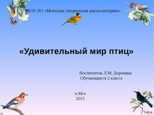 «Удивительный мир птиц» ГКОУ ЛО «Мгинская специальная школа-интернат» Воспит