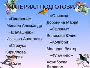 МАТЕРИАЛ ПОДГОТОВИЛИ «Пингвины» Минаев Александр «Шалашник» Исакова Анастасия