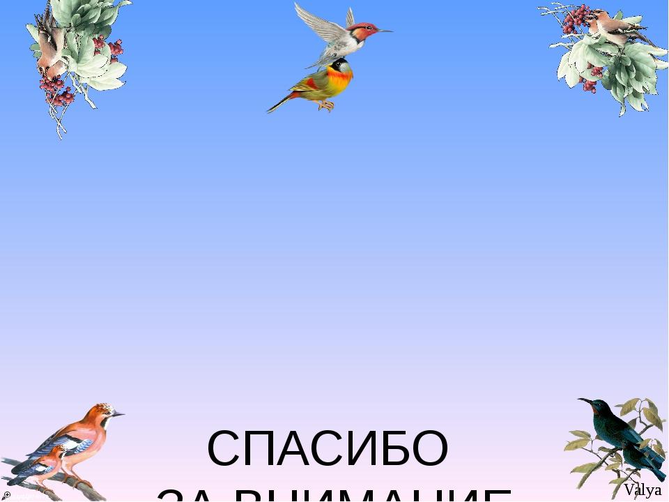 СПАСИБО ЗА ВНИМАНИЕ Valya Valya
