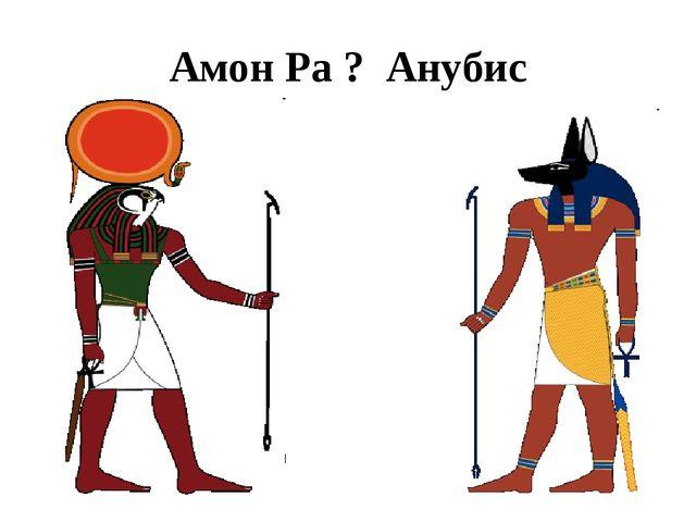 Амон Ра ? Анубис