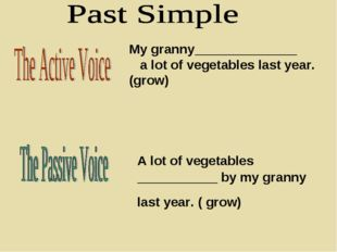 My granny______________ a lot of vegetables last year. (grow) A lot of vegeta