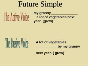 My granny______________ a lot of vegetables next year. (grow) A lot of vegeta