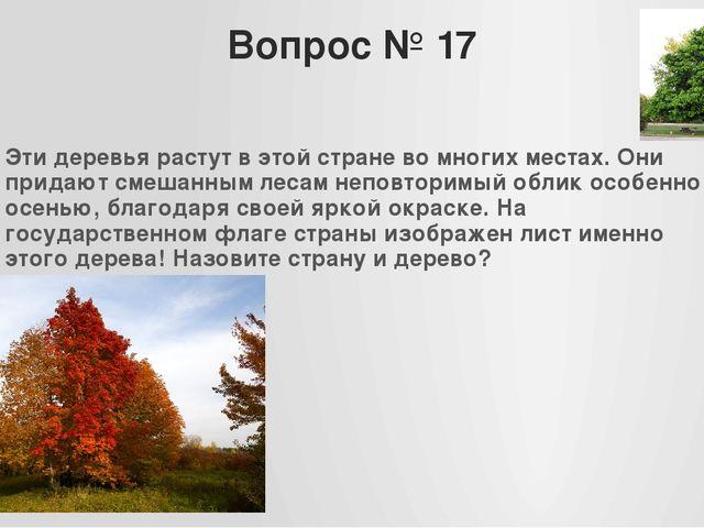 Вопрос № 17 Эти деревья растут в этой стране во многих местах. Они придают см...
