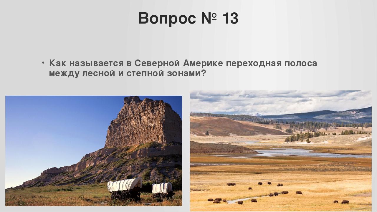 Вопрос № 13 Как называется в Северной Америке переходная полоса между лесной...