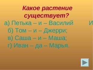 Какое растение существует? а) Петька – и – Василий Иванович; б) Том – и – Дж