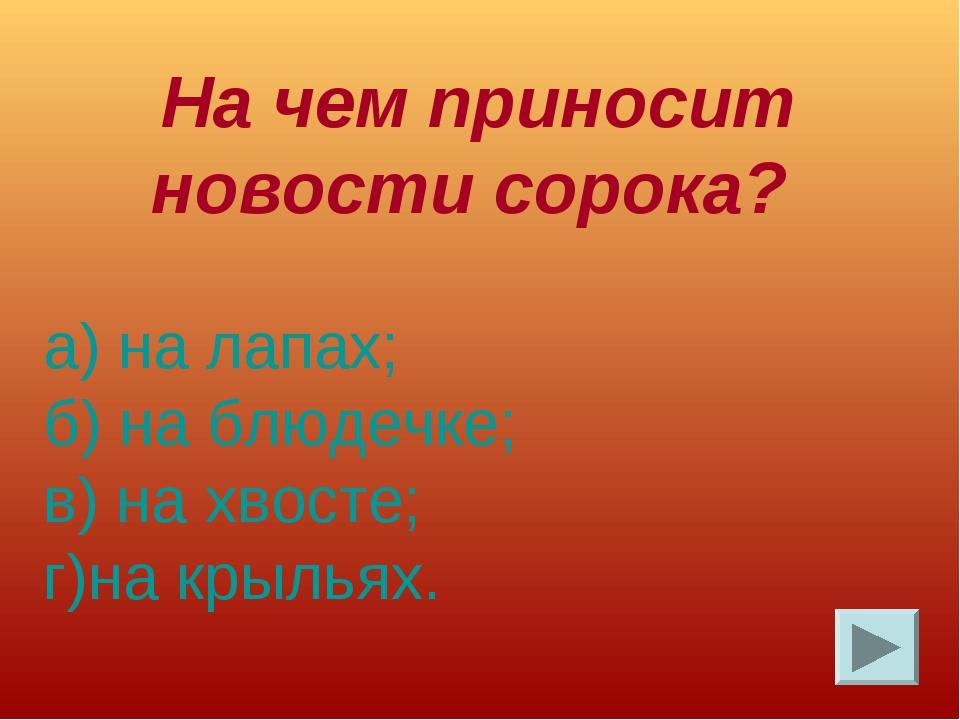 На чем приносит новости сорока? а) на лапах; б) на блюдечке; в) на хвосте; г...