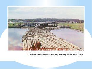 Сплав леса по Петровскому каналу. Фото 1909 года