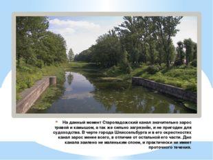 На данный момент Староладожский канал значительно зарос травой и камышом, а т