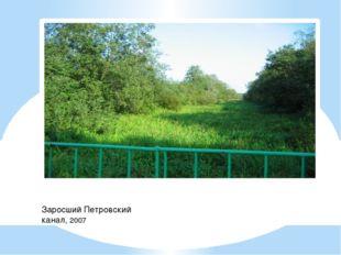 Заросший Петровский канал, 2007